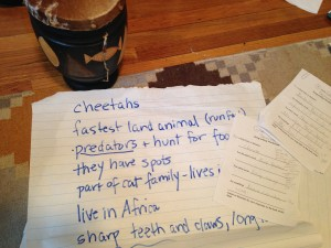 Class brainstorming sheet with ideas about cheetahs.